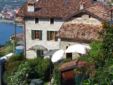 Picture of Holiday on a vineyard farmstead at lake Como